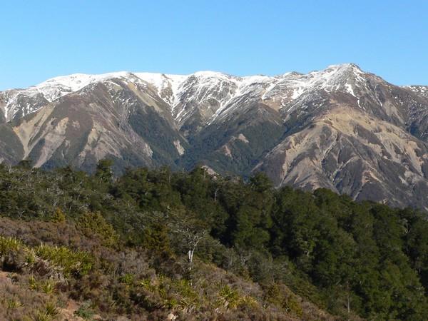 Kaweka Ridge