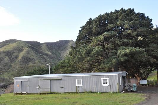 kawakawastation.jpg
